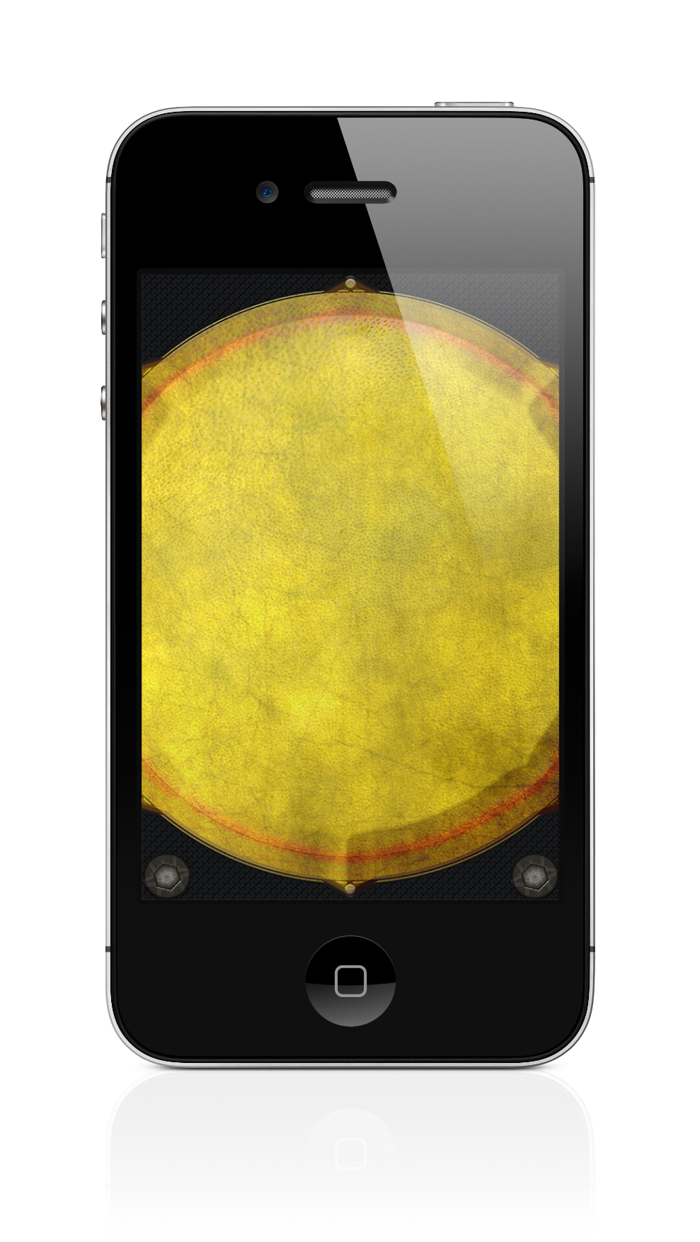 Djembe Drum iPhone Screenshot 1 of 2